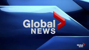 Global News at 6: Feb. 19, 2019